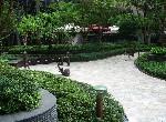 電梯住宅-A-22心六藝-新北市樹林區學成路