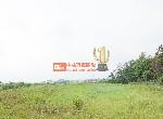 買屋賣屋租屋中信房屋-G012新屋漂亮農地-1