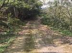 農地-左鎮山豹段竹子園-臺南市左鎮區山豹段