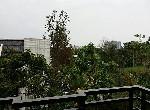 別墅-442羅運全新電梯別墅-宜蘭縣羅東鎮文林路