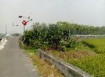 農地-F014-民雄外環道農地-嘉義縣民雄鄉