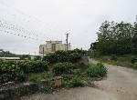 農地-義大世界旁休閒農地-高雄市大樹區