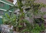 建地-新營市中心商業用地-臺南市新營區