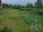 農地-524親河美農地-宜蘭縣冬山鄉