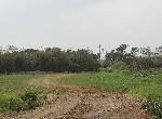 農地-長紅段美農地-桃園市楊梅區長紅段