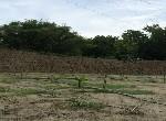 農地-左鎮田園農地-臺南市左鎮區山豹段