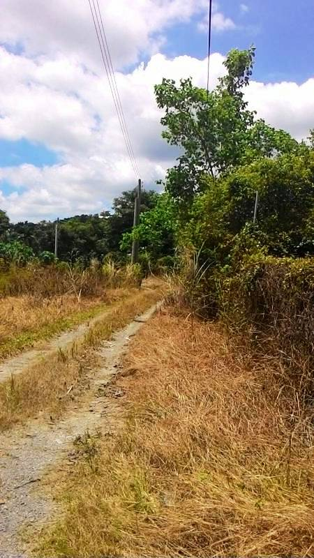農地-櫻花渡假村美農地+別墅-屏東縣萬巒鄉赤山段