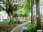 買屋賣屋租屋中信房屋-至誠公園亮麗美屋