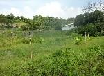 農地-左鎮美農地-臺南市左鎮區山豹段