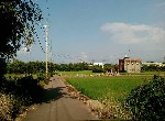 農地-觀音坑尾66農地-桃園市觀音區坑尾段