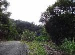 農地-f-82成福林地-新北市三峽區成福成福小段