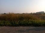 農地-佳里龍安段1分半農地-臺南市佳里區